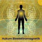 Hukum Bioelektromagnetik– Pengertian dan Manfaatnya Untuk Anda